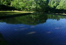水田に映り込む山と空2