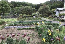 程よい広さ、家庭菜園に好適です
